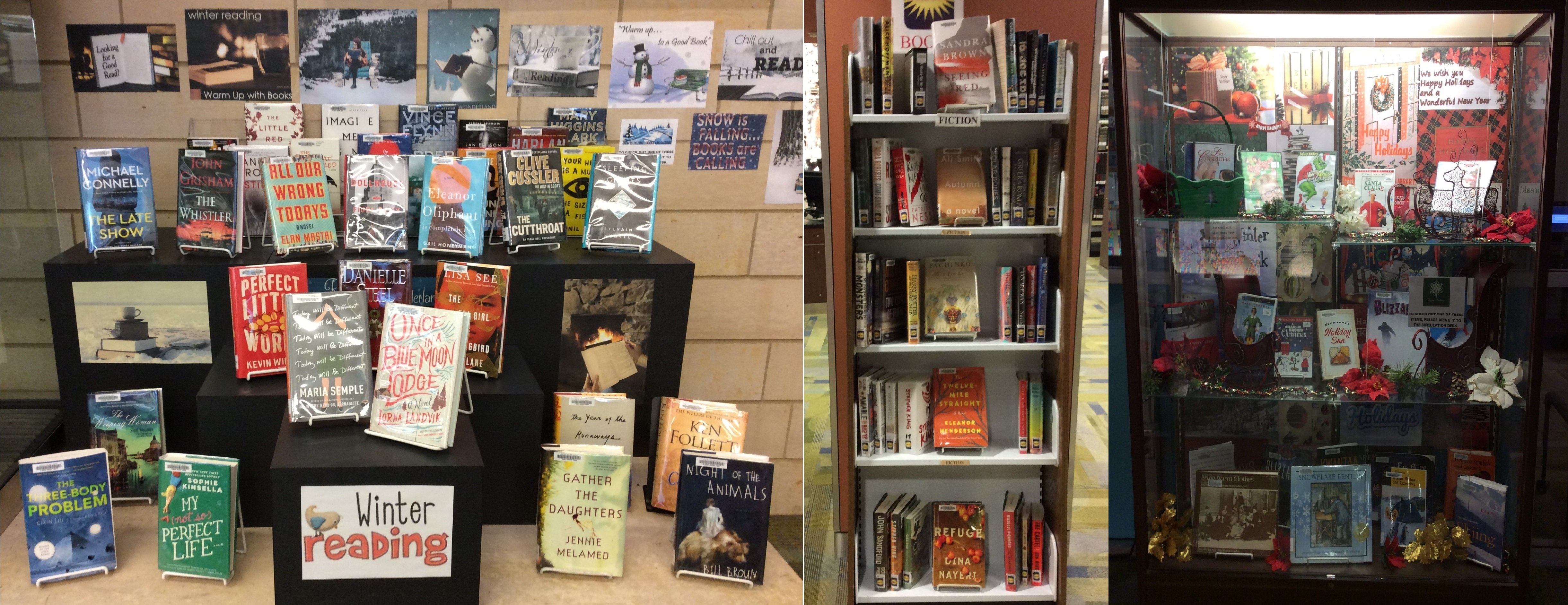 What's on display in Century Library, December 2017.