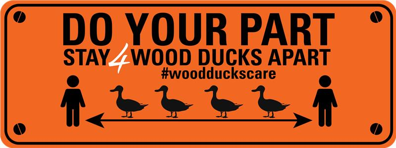 Do your part, stay 4 Wood Ducks apart