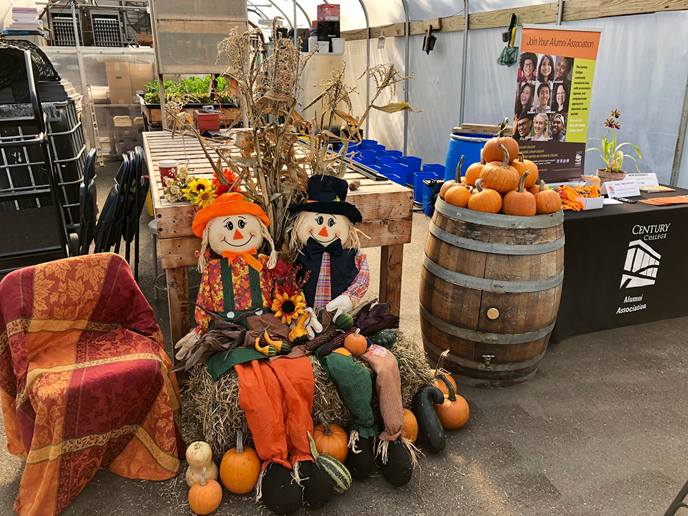 Interior of a Century greenhouse decorated with pumpkins and scarecrows.