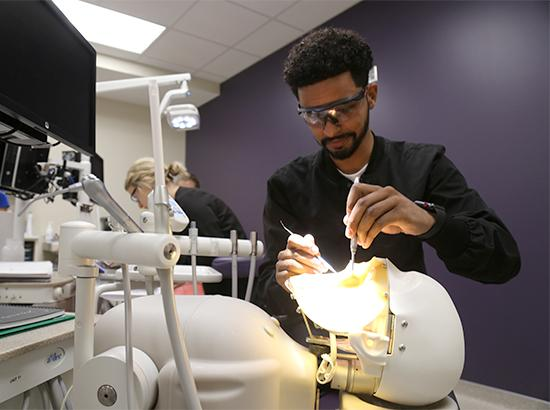 Student learning by working on a dental simulator.