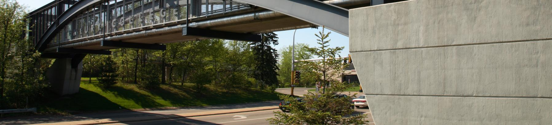 Image of Century College bridge.