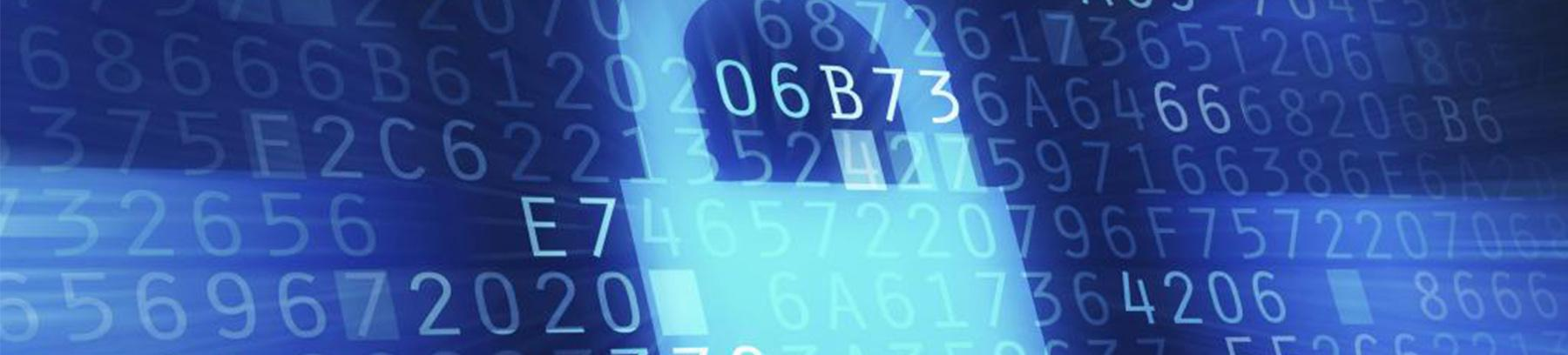 Cybersecurity, Virtualization and Forensics Program
