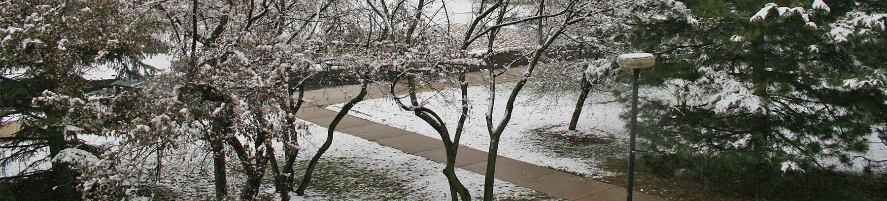 Century campus in winter