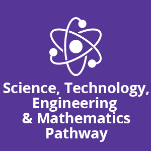 Science, Technology, Engineering & Mathematics Pathway